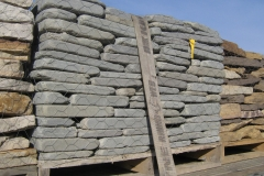 Bluestone Tumbled Wall Stone